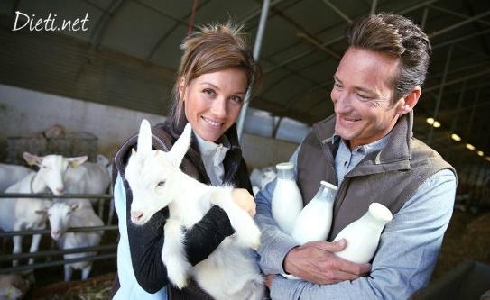 Козе мляко - ползи и хранителни качества