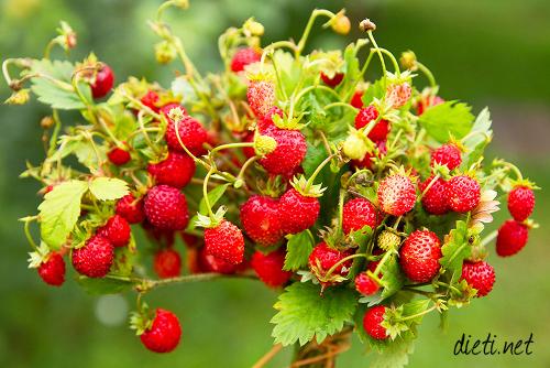 Горски плодове: Ягоди, Дренки и Лешник